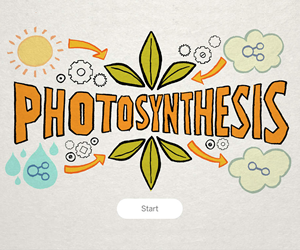 Photosynthesis.fw